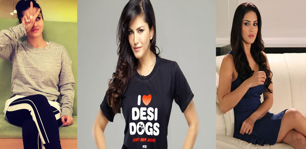 Photo of Do You Know About Sunny Leone Daily Routine, Read Now